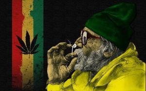Целебная конопля форум своих людей марихуана